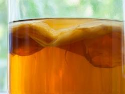 Le kombucha: une tasse de thé... vivant!