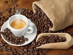 Café équitable : les vrais de vrais