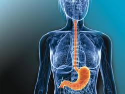 Brulures estomac 142 antiacides evalues