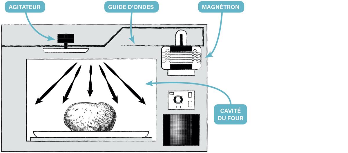 comment-fonctionne-micro-onde