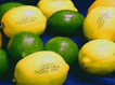 Des fruits et légumes marqués au laser