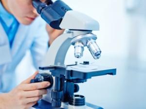 Dossier - Comment mieux comprendre les études scientifiques - Études scientifiques: évaluer les risques annoncés