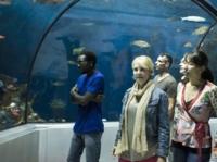 018-Aquarium-du-Quebec-Activite-Face_OADA_768x573.jpg