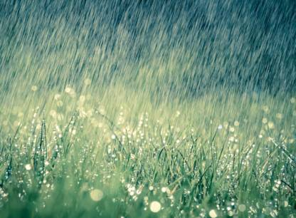 eau-pluie-jardinage-ecolo