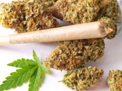 abandonner-cannabis