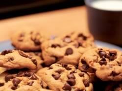 Test - Biscuits aux brisures de chocolat 95 varietes analysees