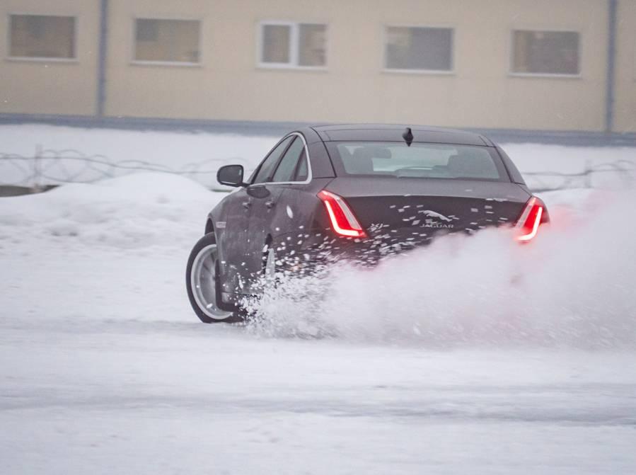 jaguar-neige