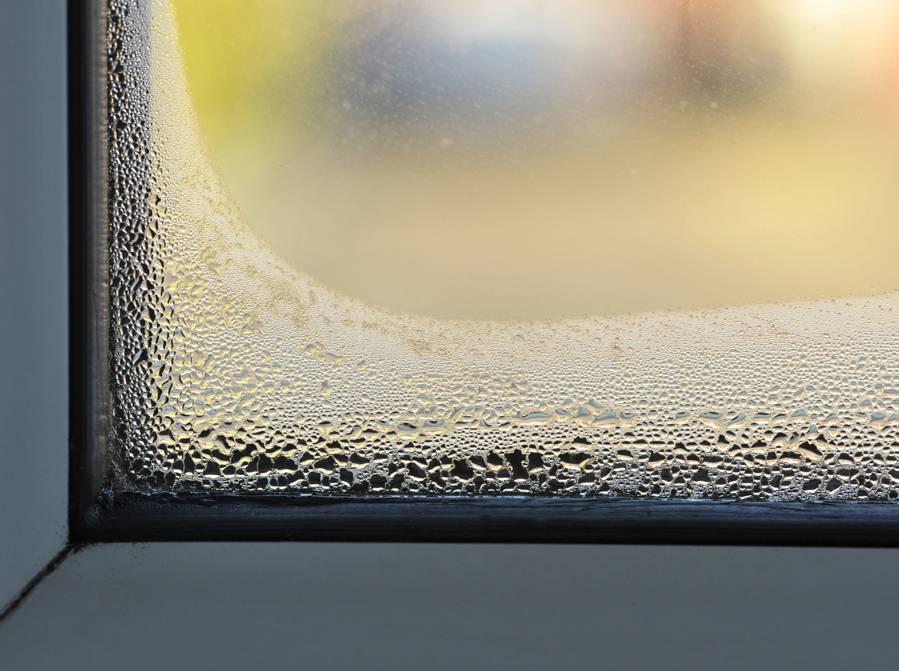 Mesurez Le Taux DHumidit De La Maison Avec Un Hygromtre