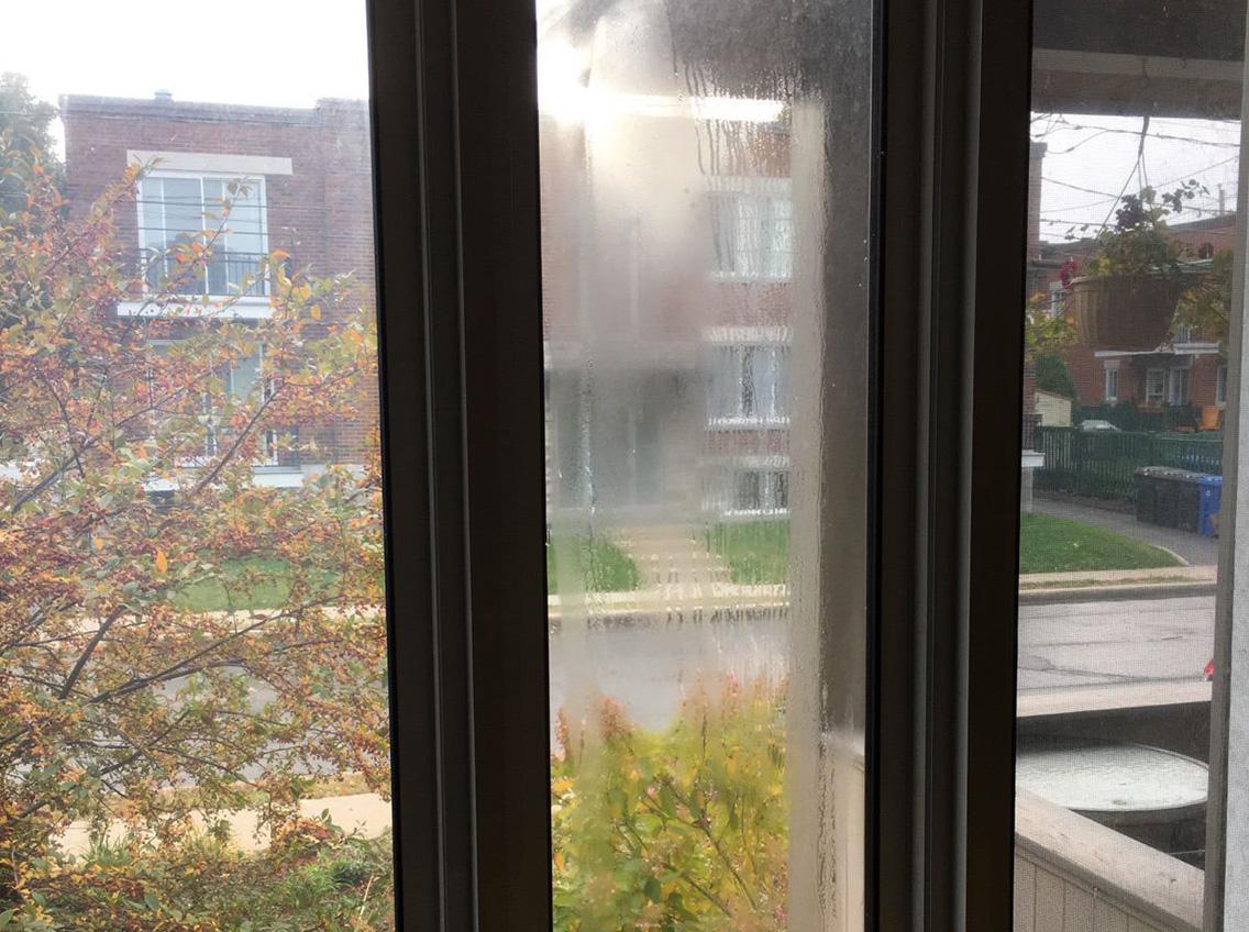 Ne laissez pas cet automne pluvieux embuer vos fenêtres à double vitrage protégez vous ca