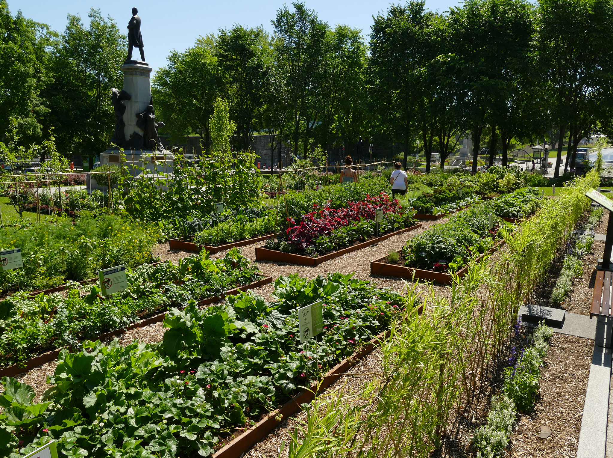 Agriculture urbaine cultiver la ville prot gez for Jardin urbain permaculture